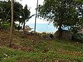 Samui 2013 may - panoramio (18).jpg
