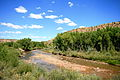San Miguel River near Nucla Colorado...JPG