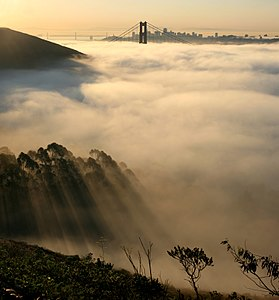 Out of fog Bay Bridge and Golden Gate Bridge and  San Francisco in fog and w:crepuscular rays.