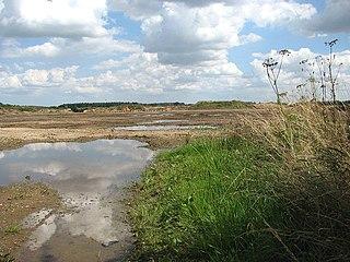 Beeston with Bittering civil parish in Norfolk, England