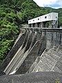 Sarutani Dam left view.jpg