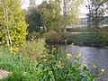 Sauerfluss bei Echternacherbrueck (River Sauer) - geo.hlipp.de - 14398.jpg