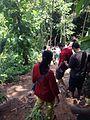 Scary forest near BOTI FALLS.jpg