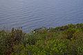 Scogli tra Framura e Bonassola - panoramio.jpg