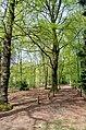 Scoutcentrum Buitenzorg Baarn - panoramio (15).jpg