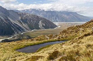 Southland montane grasslands terrestrial ecoregion in New Zealand