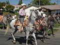 Seattle - Fiestas Patrias Parade 2008 - horses 14.jpg