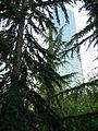 Seattle Freeway Park 12.jpg
