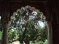 Sheesh Mahal, Shalimar Bagh, Delhi 31.JPG