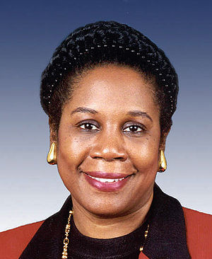 300px Sheila Jackson Lee%2C official 109th Congress photo Possible Voter Fraud in District of Congressional Black Caucus Member Sheila Jackson Lee