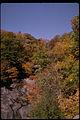 Shenandoah National Park SHEN9144.jpg