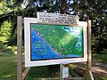 Shingle Beach Park (9315915255).jpg