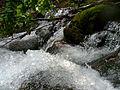Shypit Mizhhirskyi Zakarpatska-waterfall-5.jpg