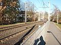 Siegburger Bahn Kilometer 631,1 P3040205.JPG