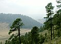 Sierra Madre.jpg