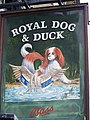 Sign for the Royal Dog and Duck - geograph.org.uk - 604928.jpg