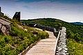 Signal Hill St John Harbour Newfoundland (40469266245).jpg