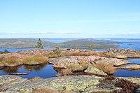 Skuleskogen National Park.jpg