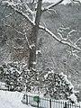 Snow-covered garden - panoramio.jpg