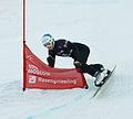 Snowboard LG FIS World Cup Moscow 2012 023.jpg