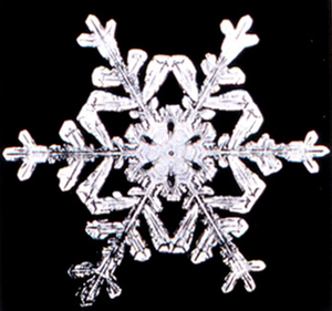 Dihedral group - The symmetry group of a snowflake is D6, a dihedral symmetry, the same as for a regular hexagon.