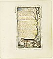Songs of Innocence and of Experience- The Tyger MET DR384.jpg