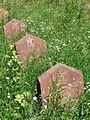 Soviet Gravestones - Sighet - Romania.jpg