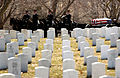 Space Shuttle Columbia funeral -a.jpg