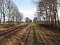 Spoorlijn Hamont - Budel I.jpg