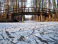 Spreewald im Winter - panoramio (14).jpg