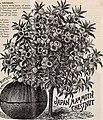 Spring 1899 - Parrys' Pomona Nurseries (1899) (20559908281).jpg