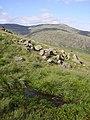 Spring Seatallan - geograph.org.uk - 246364.jpg