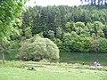 Staindale Lake - geograph.org.uk - 1328507.jpg