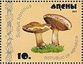 Stamp of Abkhazia - 2007 - Colnect 1008499 - Suillus bovinus.jpeg
