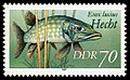 Stamps of Germany (DDR) 1987, MiNr 3100 I.jpg