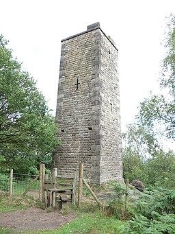 Stanton Moor Tower - geograph.org.uk - 2031787