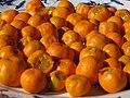 Starr-130113-1432-Citrofortunella microcarpa-fruits on plate-Hawea Pl Olinda-Maui (25204477925).jpg