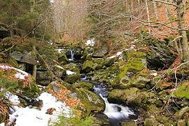 Steinklamm bei Spiegelau im Naturpark Bayerischer Wald im Frühling 3.JPG