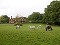 Stock's Cross, Bramshaw, New Forest - geograph.org.uk - 59883.jpg