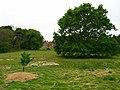 Stonelynk Farm - geograph.org.uk - 423761.jpg