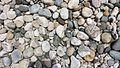 Stones at Jaflong.jpg