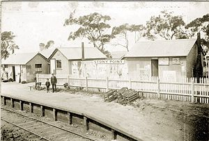 Stony Point railway line - Stony Point station in 1892.