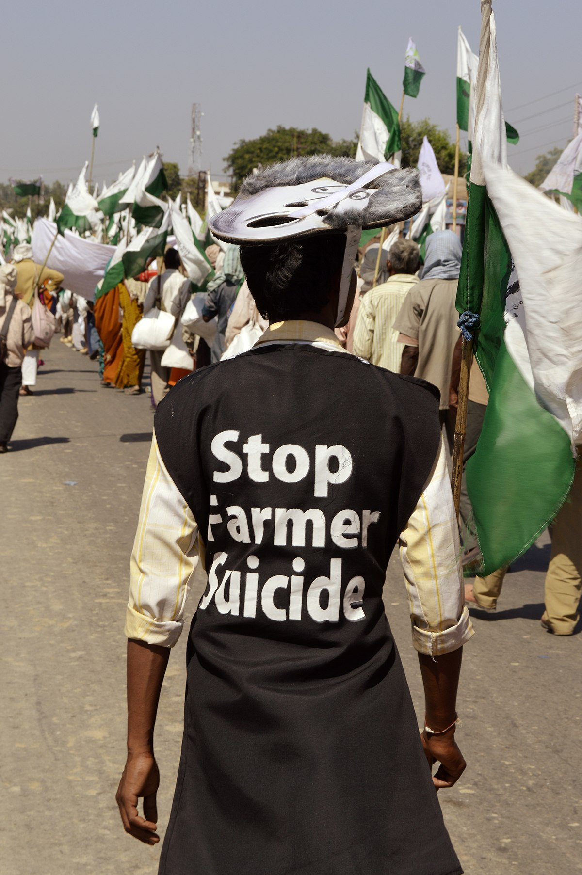 farmers suicide Farmers have higher suicide risk due to the nature of their work and the lack of mental health treatment available, these individuals suffer from higher rates of.