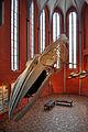 Stralsund, im Meeresmuseum (2013-02-13), by Klugschnacker in Wikipedia (57).JPG
