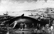 Dipinto di una balena spiaggiata a Katwijk nei Paesi Bassi del 1598.