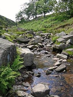 Stream at Bronte Bridge (3660561032)