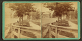 Street scene showing fence, walking path and building in Brunswick, Ga, from Robert N. Dennis collection of stereoscopic views.png