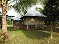 Sulawesi trsr DSCN0974.JPG