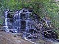 Sylvia Falls, Valley of the Waters, Blue Mountains.JPG