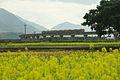TRA Hua-Tung Line 01.jpg